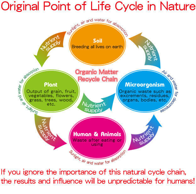 Organic life cycle in nature yes sun environmental biotech co ltd organic life cycle in nature ccuart Gallery